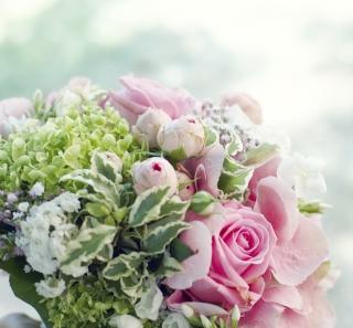 beautiful-beauty-blooming-355234