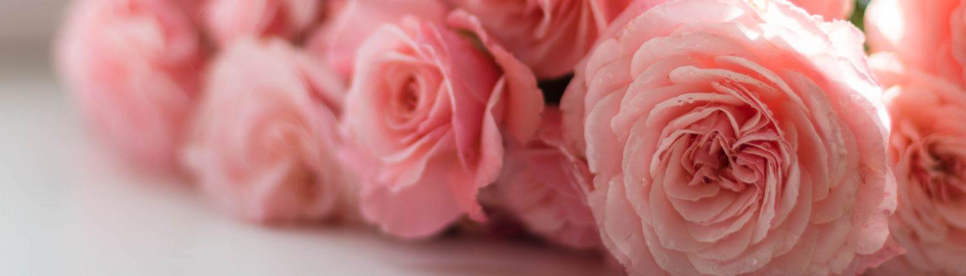 Petals for Hope